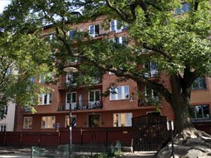 Bastugatan 21, sett från Ivar Los park